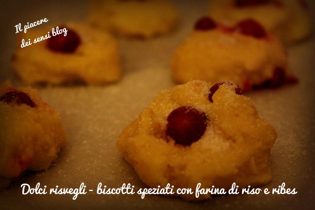 Dolci risvegli - biscotti speziati con farina di riso e ribes