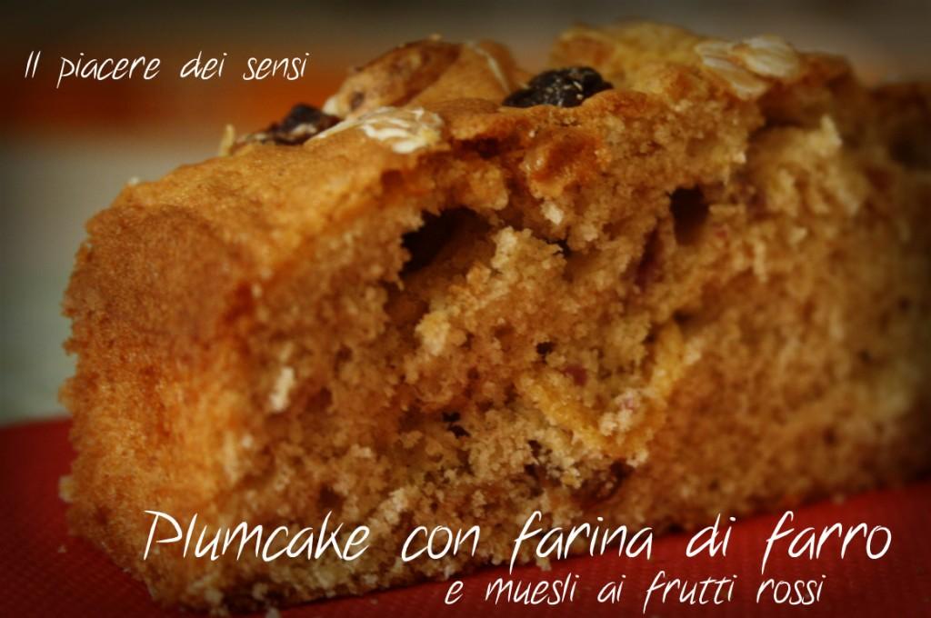 Plumcake con farina di farro e muesli ai frutti rossi