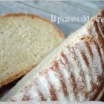 Come usare la pietra refrattaria nel forno di casa – part 2 (cuocere il pane e la pizza)