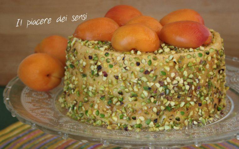 Chiffon cake con albicocche e pistacchi (stampo 17,7 cm x 11,4 cm)