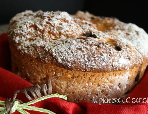 Bisciola a modo mio con bacche di goji – torta natalizia