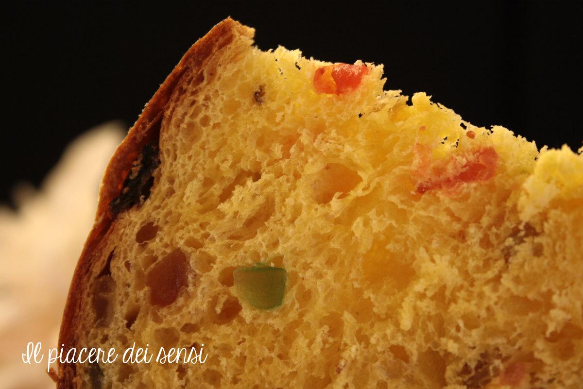 panettone ricetta sara papa