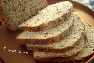 pane in cassetta con semi