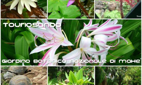 Giardino botanico nazionale di Mahè – Seychelles
