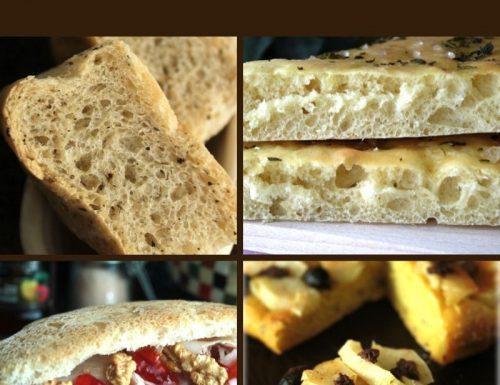 Focacce Raccolta di ricette facili e veloci