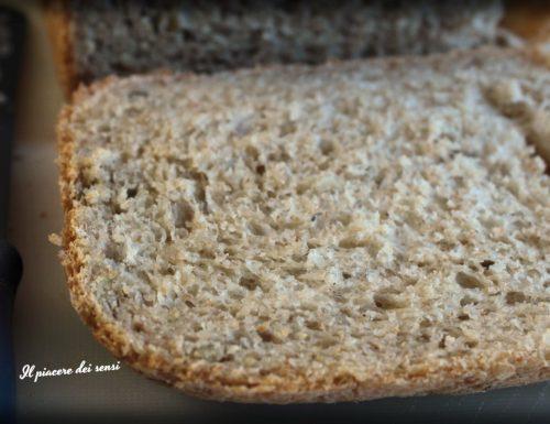 Pane al parmigiano semi-integrale