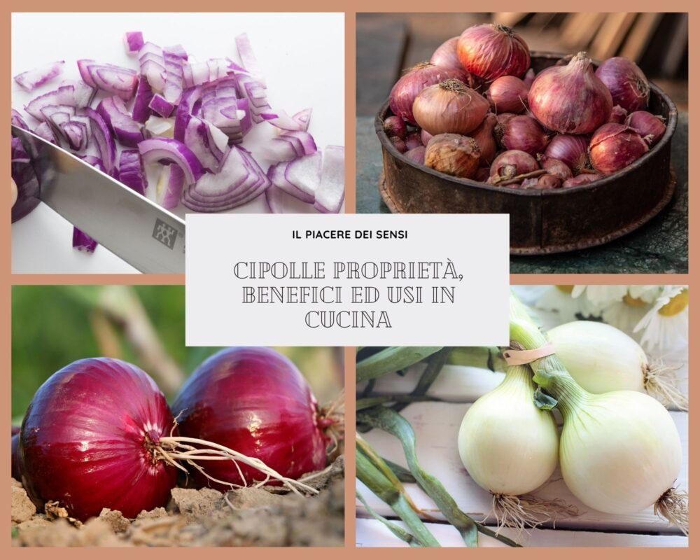 Cipolle proprietà benefici ed usi in cucina